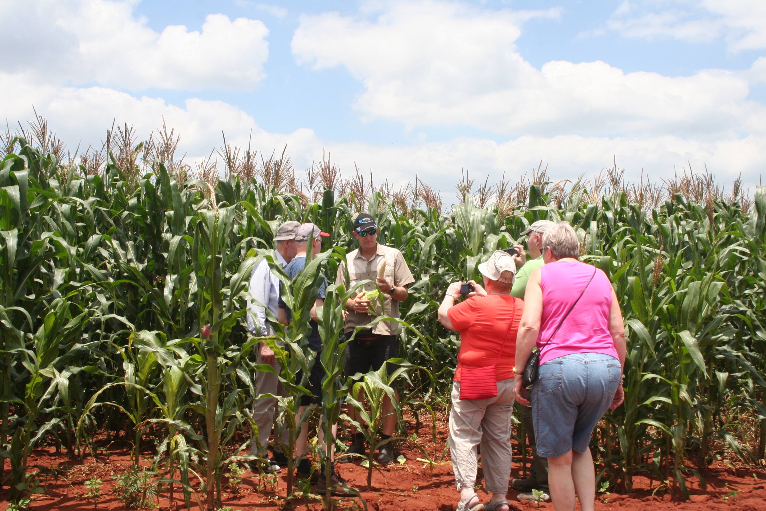 Agricultural Tours in Zimbabwe